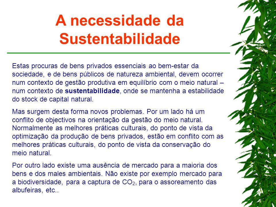 A necessidade da Sustentabilidade