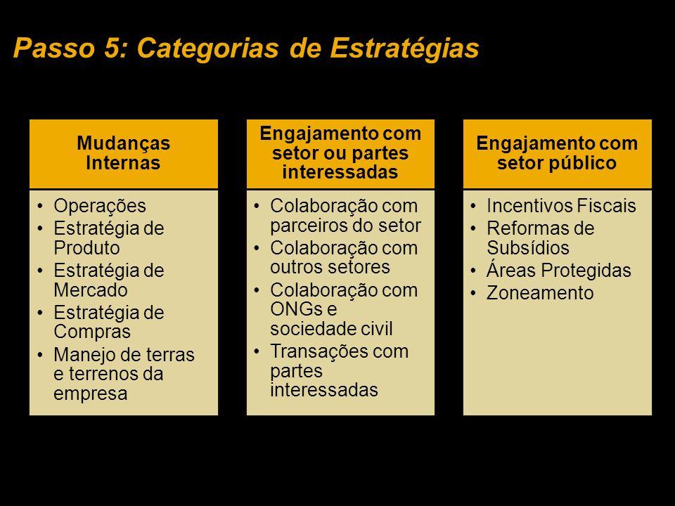 Passo 5: Categorias de Estratégias