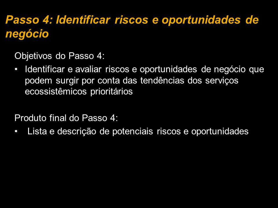 Passo 4: Identificar riscos e oportunidades de negócio