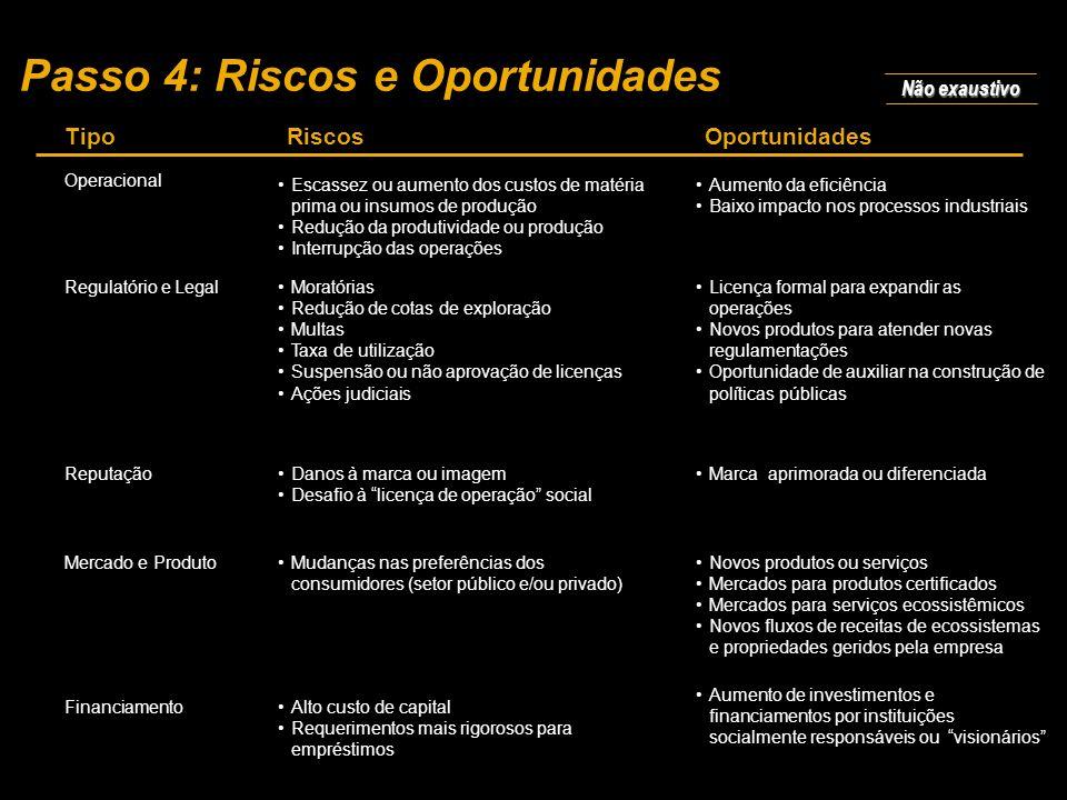 Passo 4: Riscos e Oportunidades
