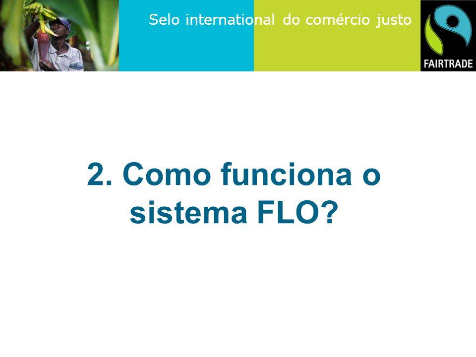 2. Como funciona o sistema FLO
