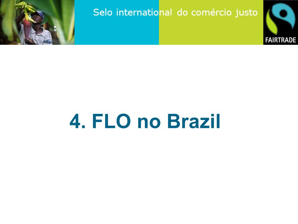 4. FLO no Brazil