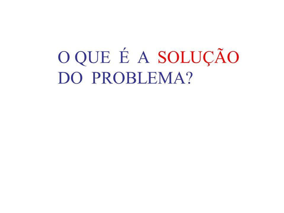 O QUE É A SOLUÇÃO DO PROBLEMA