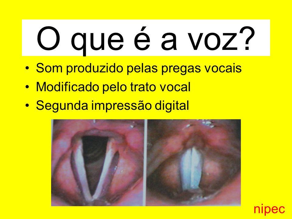 O que é a voz Som produzido pelas pregas vocais