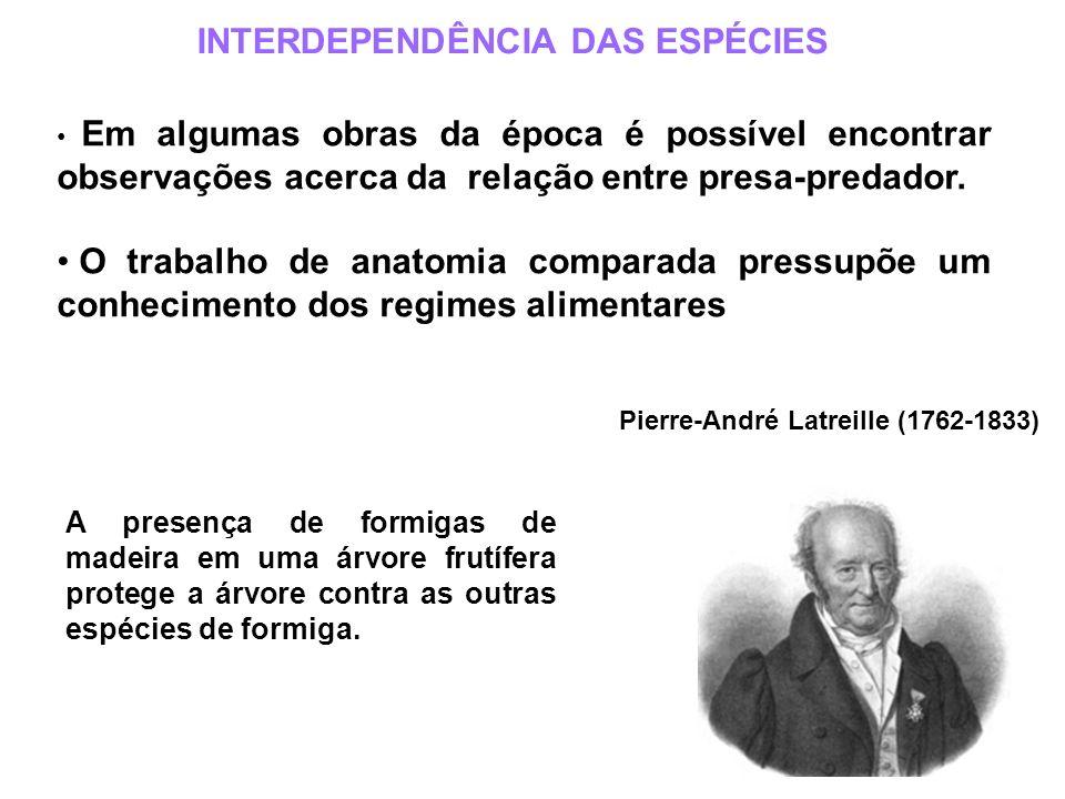 INTERDEPENDÊNCIA DAS ESPÉCIES