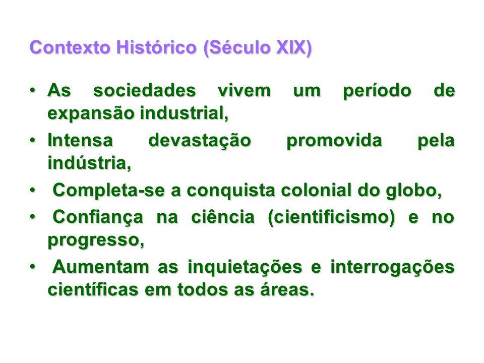 Contexto Histórico (Século XIX)