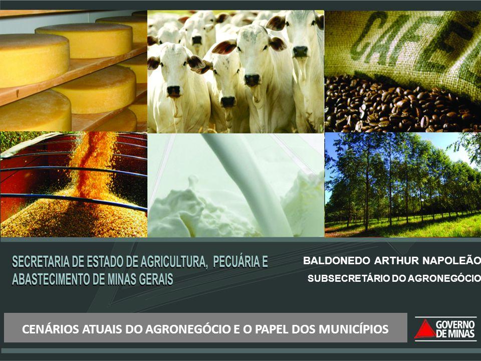 CENÁRIOS ATUAIS DO AGRONEGÓCIO E O PAPEL DOS MUNICÍPIOS