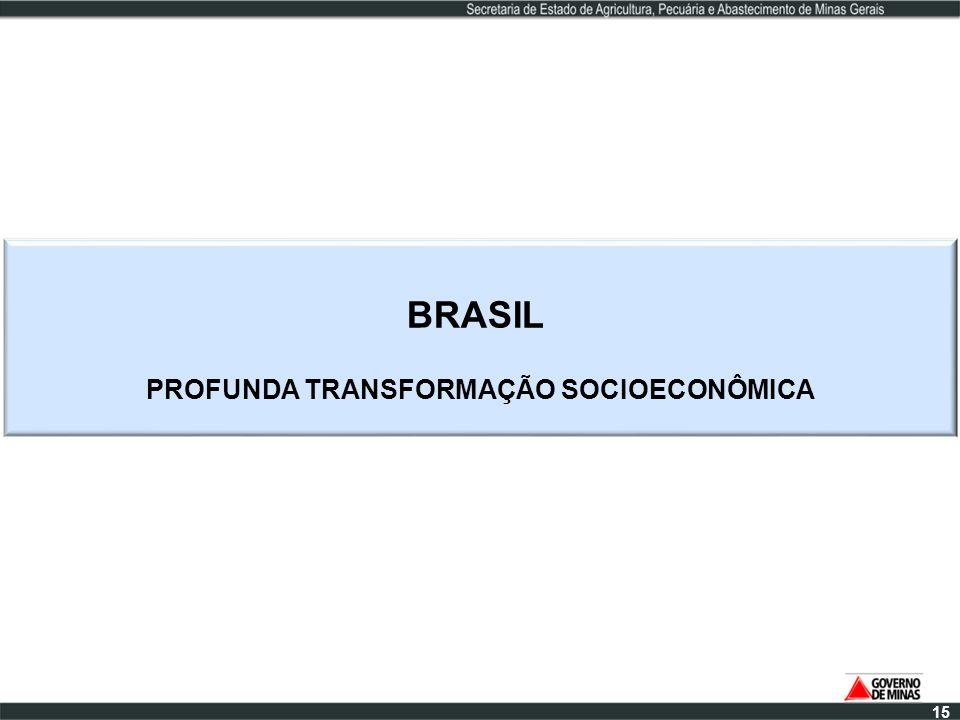 PROFUNDA TRANSFORMAÇÃO SOCIOECONÔMICA