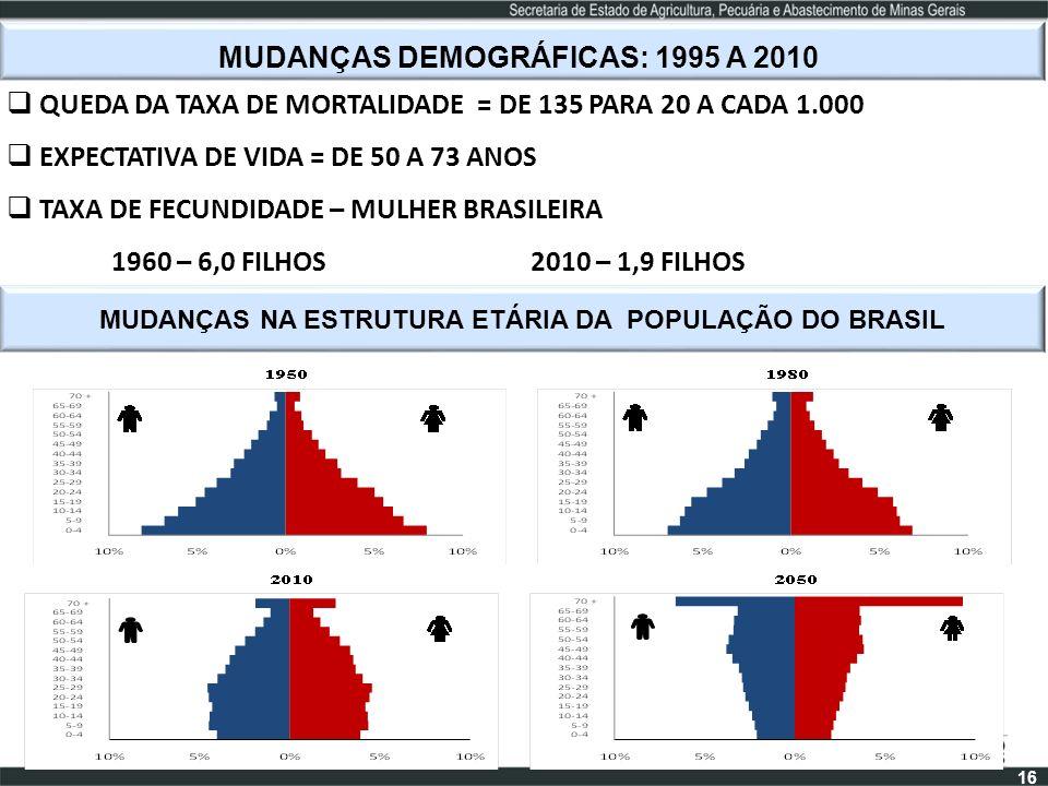 MUDANÇAS DEMOGRÁFICAS: 1995 A 2010