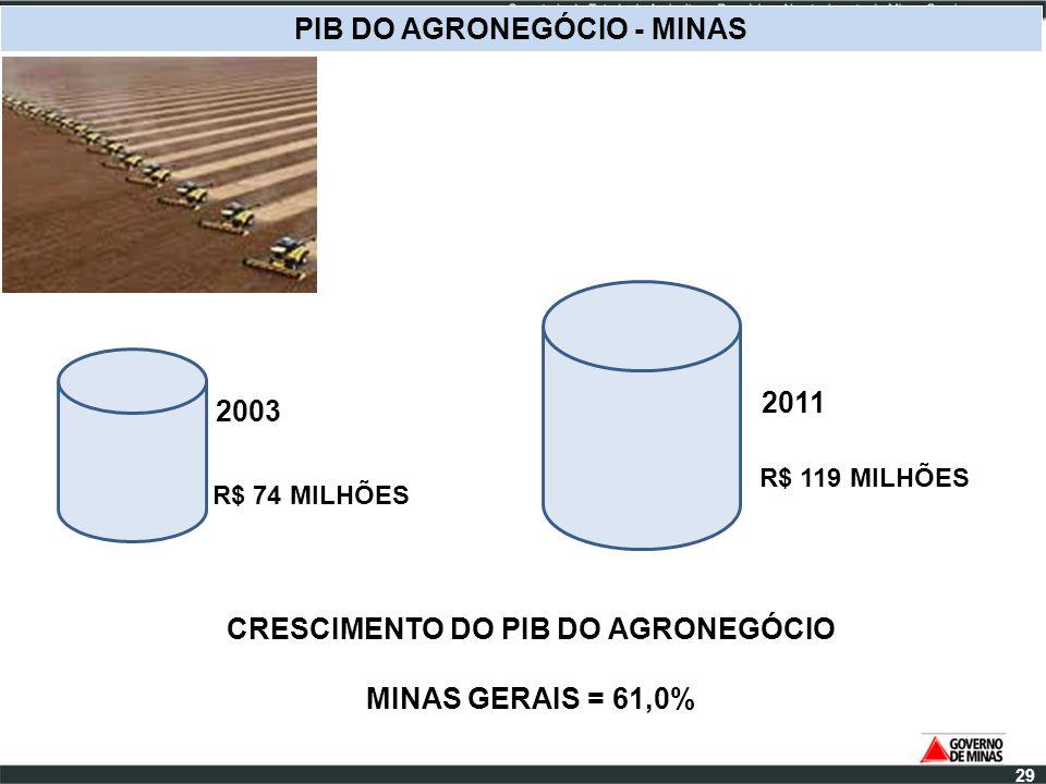 PIB DO AGRONEGÓCIO - MINAS CRESCIMENTO DO PIB DO AGRONEGÓCIO