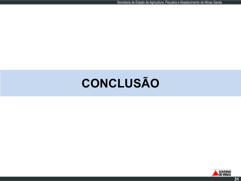 CONCLUSÃO 31