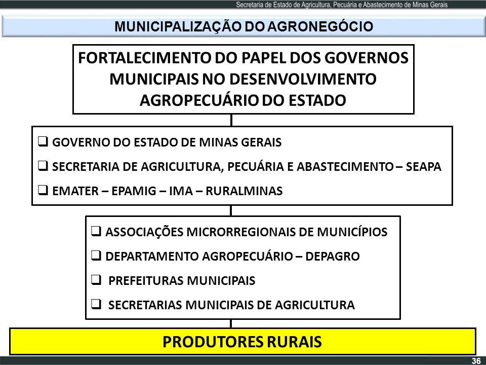 MUNICIPALIZAÇÃO DO AGRONEGÓCIO