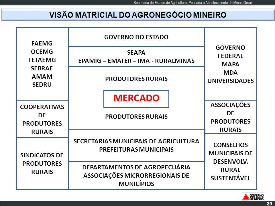 VISÃO MATRICIAL DO AGRONEGÓCIO MINEIRO