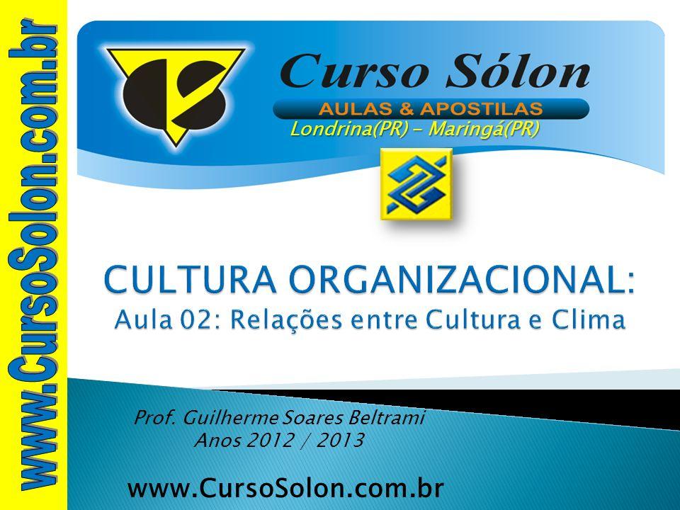 CULTURA ORGANIZACIONAL: Aula 02: Relações entre Cultura e Clima