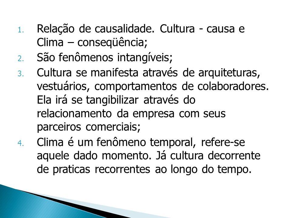 Relação de causalidade. Cultura - causa e Clima – conseqüência;