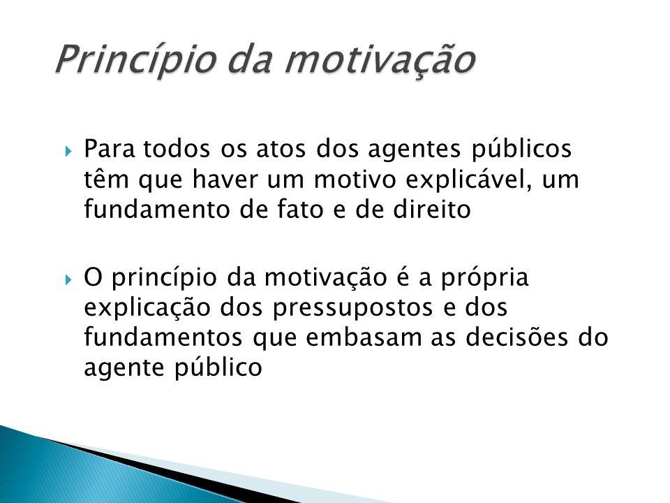 Princípio da motivação