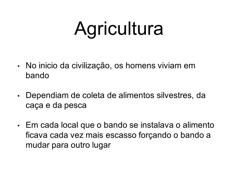 Agricultura No inicio da civilização, os homens viviam em bando
