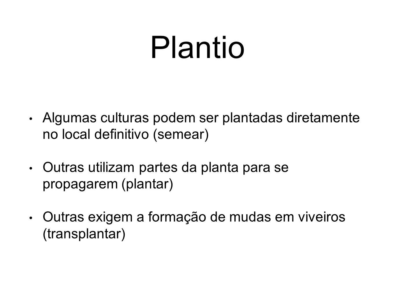 Plantio Algumas culturas podem ser plantadas diretamente no local definitivo (semear)