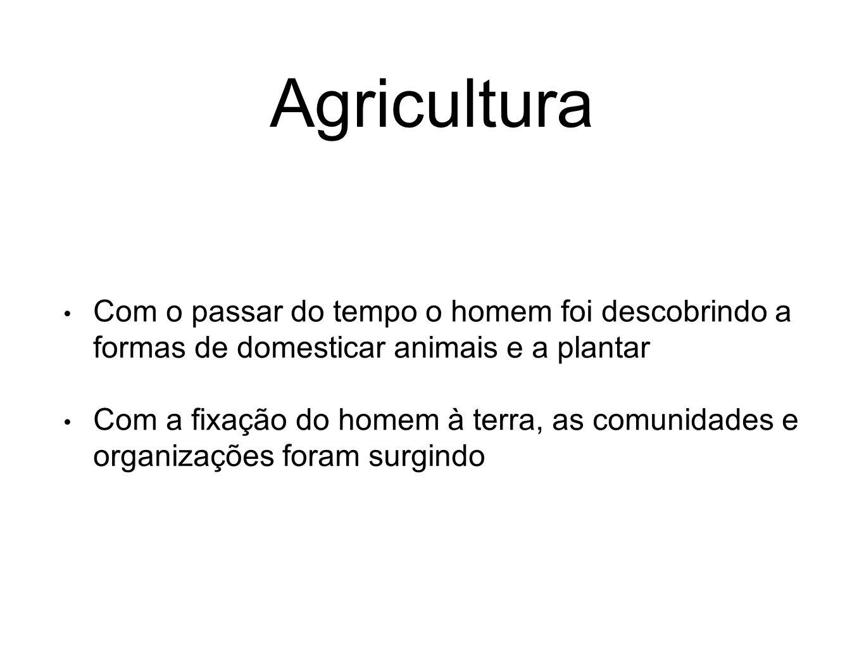 Agricultura Com o passar do tempo o homem foi descobrindo a formas de domesticar animais e a plantar.
