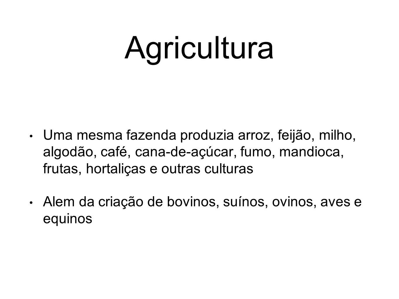 Agricultura Uma mesma fazenda produzia arroz, feijão, milho, algodão, café, cana-de-açúcar, fumo, mandioca, frutas, hortaliças e outras culturas.