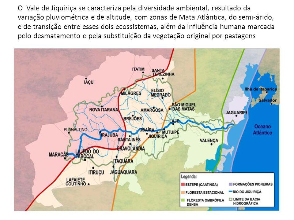 O Vale de Jiquiriça se caracteriza pela diversidade ambiental, resultado da variação pluviométrica e de altitude, com zonas de Mata Atlântica, do semi-árido, e de transição entre esses dois ecossistemas, além da influência humana marcada pelo desmatamento e pela substituição da vegetação original por pastagens