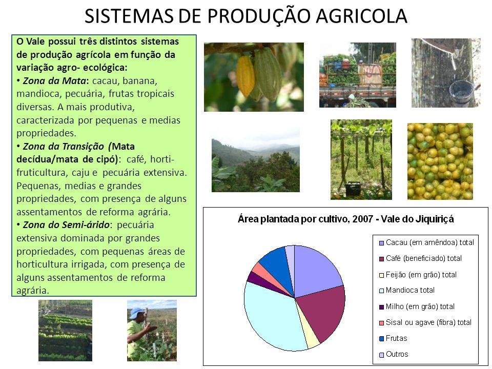 SISTEMAS DE PRODUÇÃO AGRICOLA