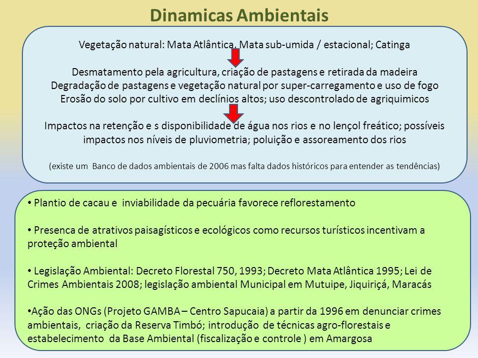 Dinamicas Ambientais Vegetação natural: Mata Atlântica, Mata sub-umida / estacional; Catinga.