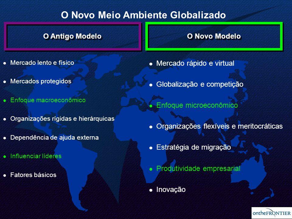 O Novo Meio Ambiente Globalizado