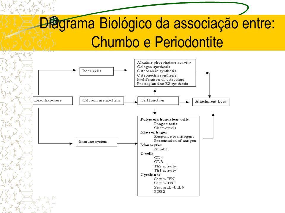 Diagrama Biológico da associação entre: Chumbo e Periodontite