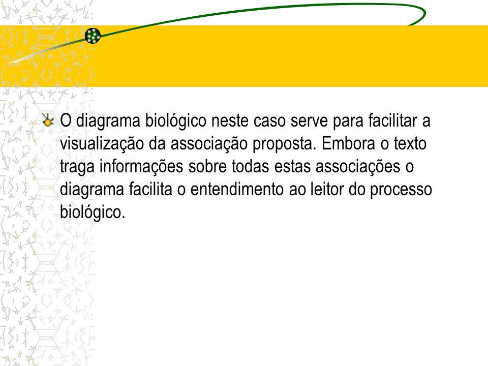 O diagrama biológico neste caso serve para facilitar a visualização da associação proposta.