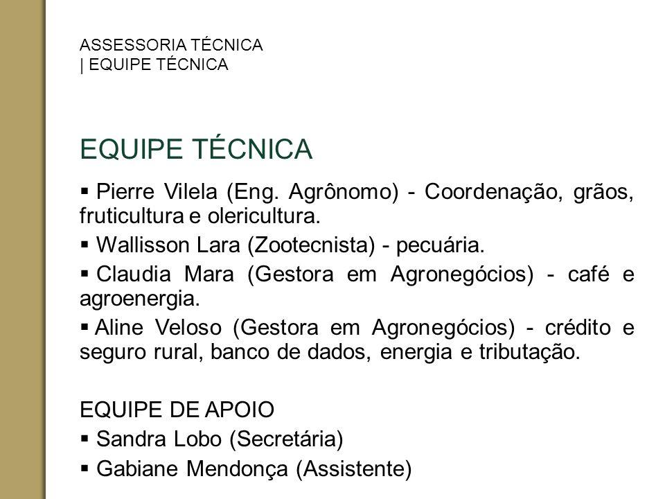 ASSESSORIA TÉCNICA | EQUIPE TÉCNICA. EQUIPE TÉCNICA. Pierre Vilela (Eng. Agrônomo) - Coordenação, grãos, fruticultura e olericultura.