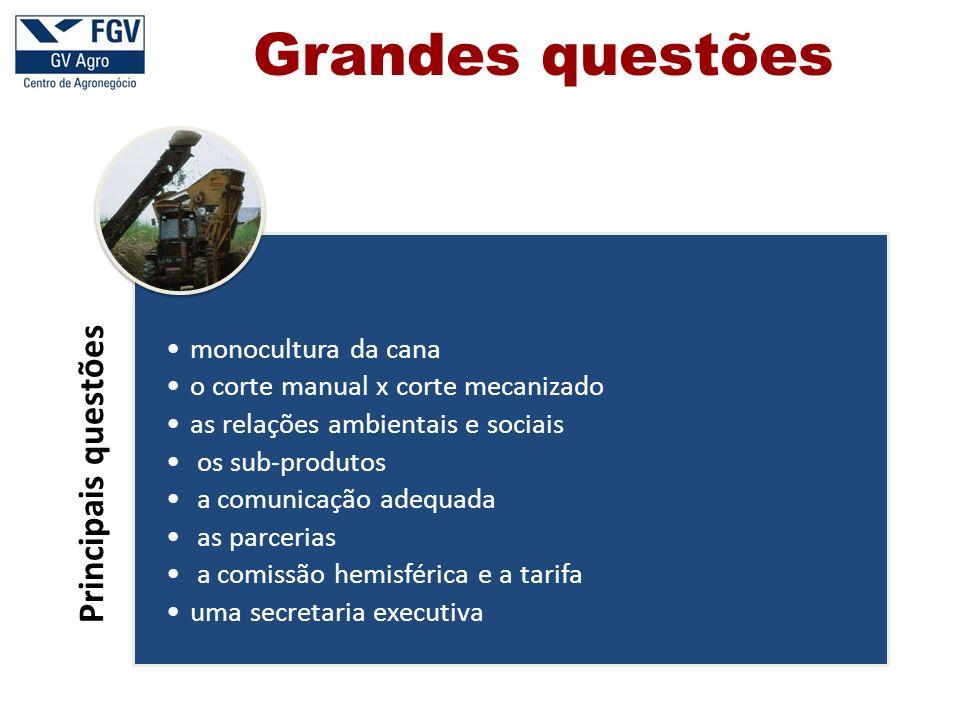 Grandes questões Principais questões monocultura da cana