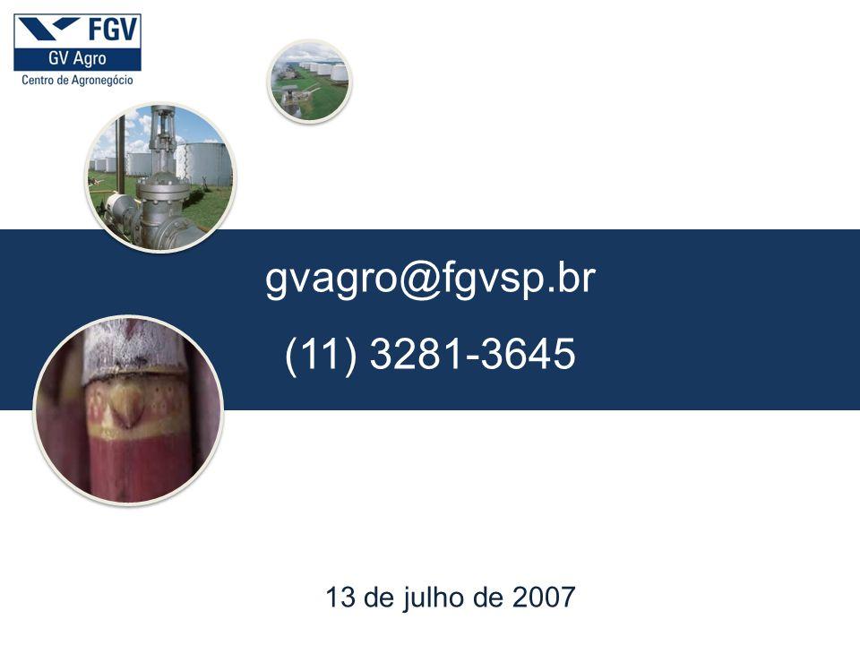 gvagro@fgvsp.br (11) 3281-3645 13 de julho de 2007