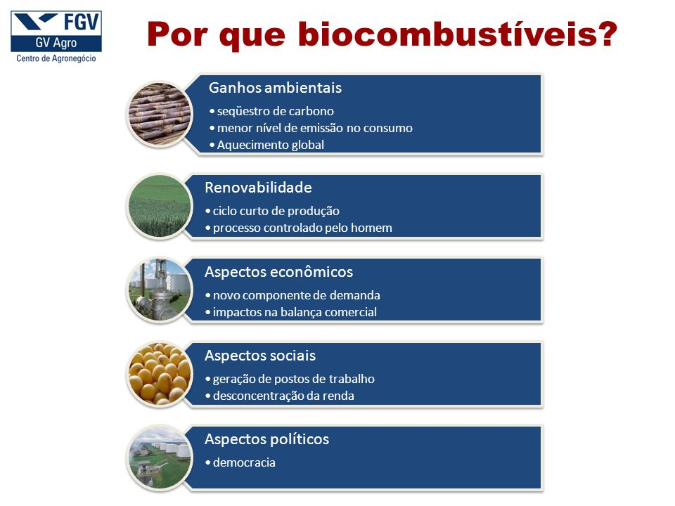 Por que biocombustíveis