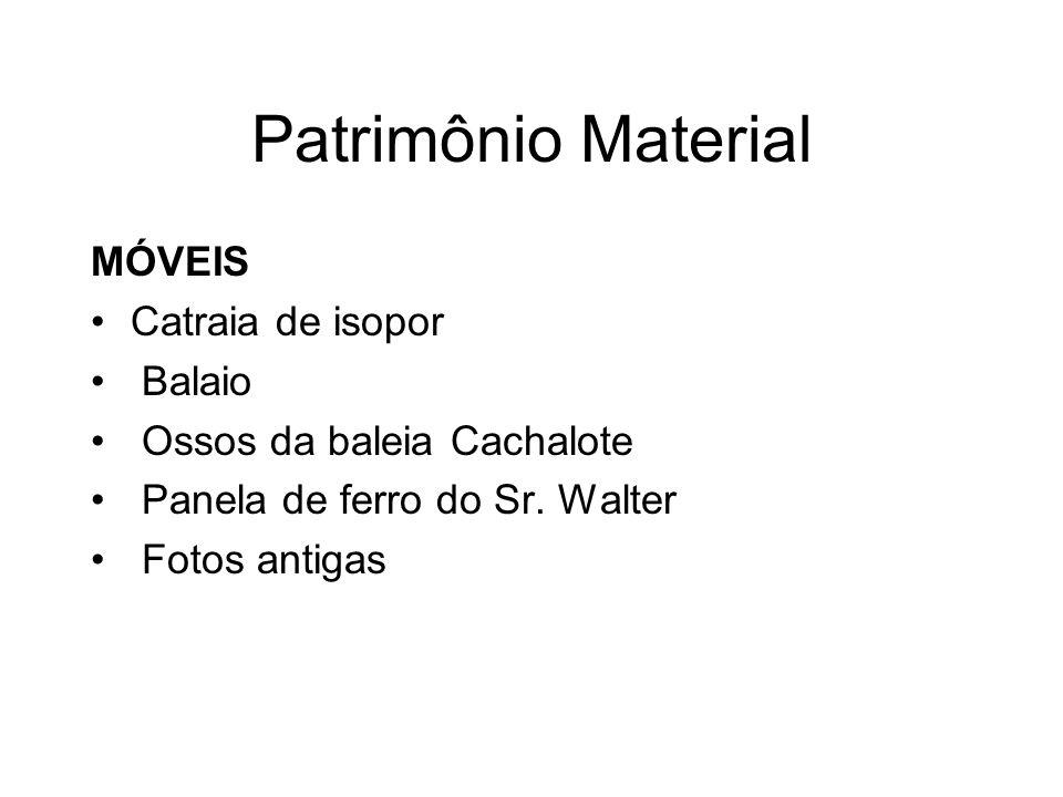 Patrimônio Material MÓVEIS Catraia de isopor Balaio