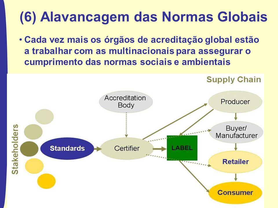 (6) Alavancagem das Normas Globais