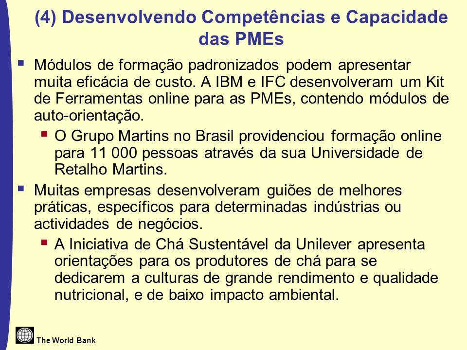 (4) Desenvolvendo Competências e Capacidade das PMEs