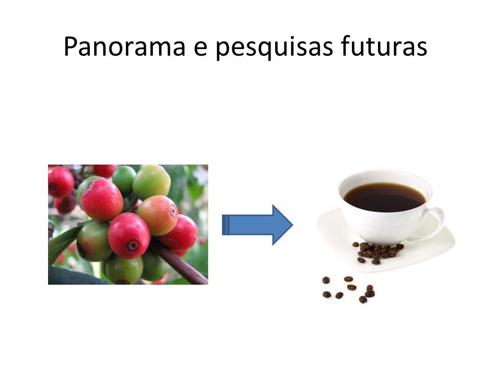 Panorama e pesquisas futuras