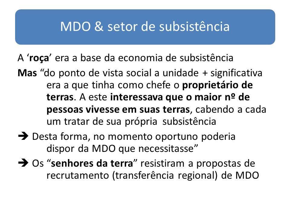 MDO & setor de subsistência