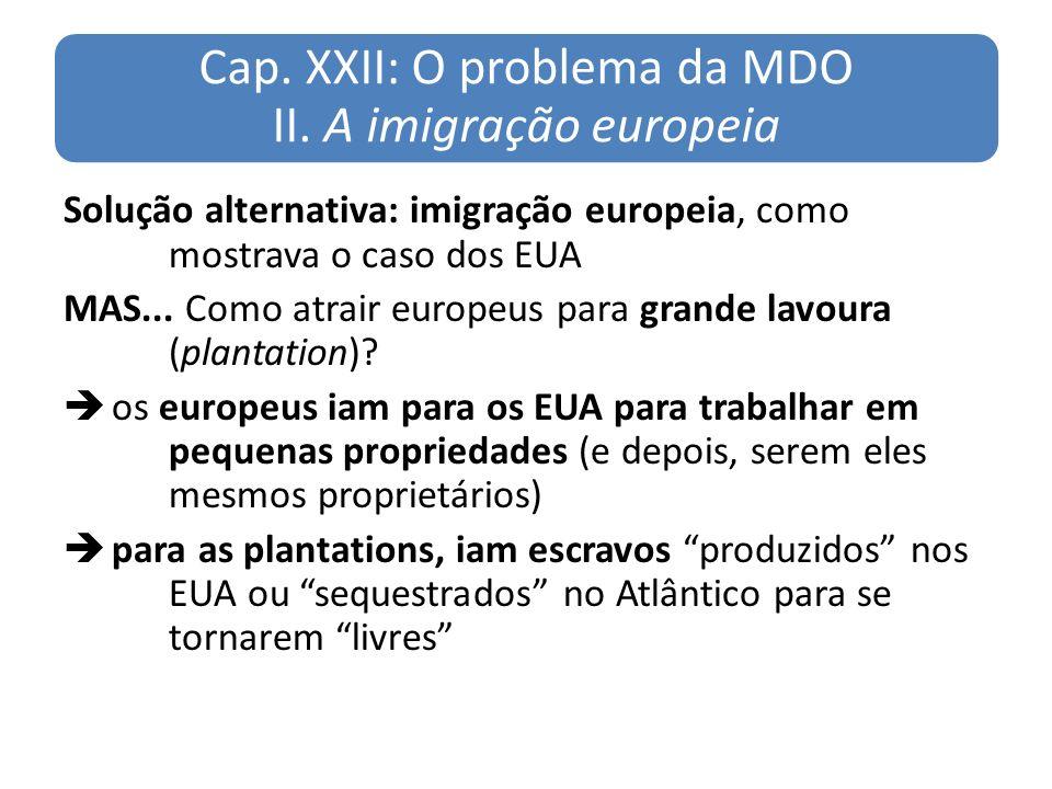 Cap. XXII: O problema da MDO II. A imigração europeia