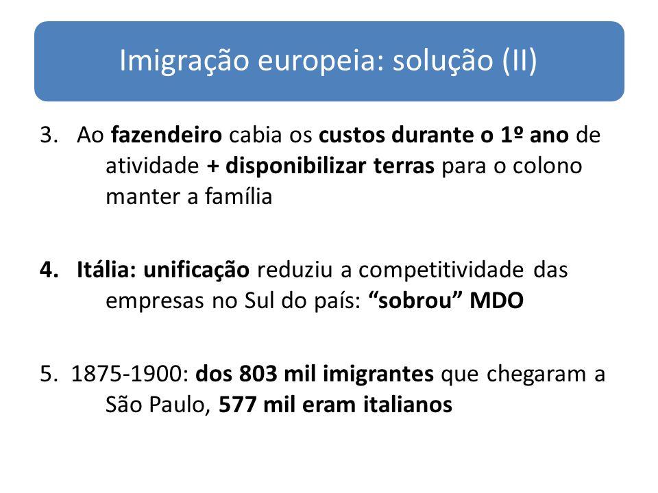 Imigração europeia: solução (II)