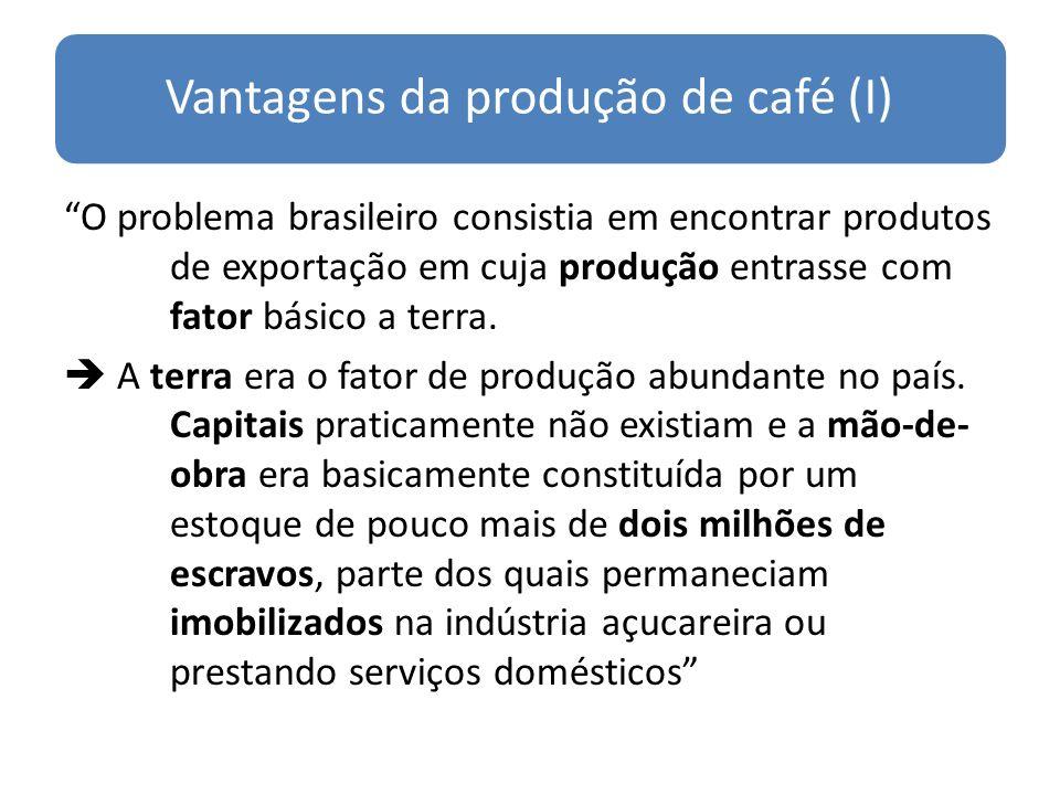 Vantagens da produção de café (I)