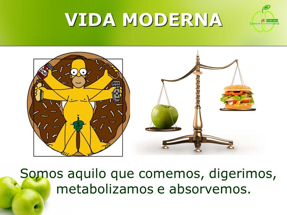 Somos aquilo que comemos, digerimos, metabolizamos e absorvemos.