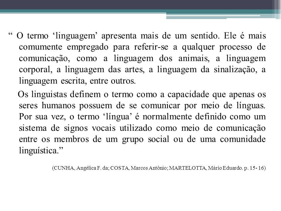 O termo 'linguagem' apresenta mais de um sentido