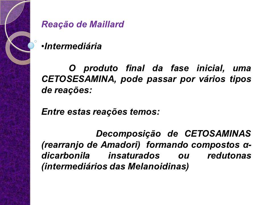 Reação de Maillard Intermediária. O produto final da fase inicial, uma CETOSESAMINA, pode passar por vários tipos de reações: