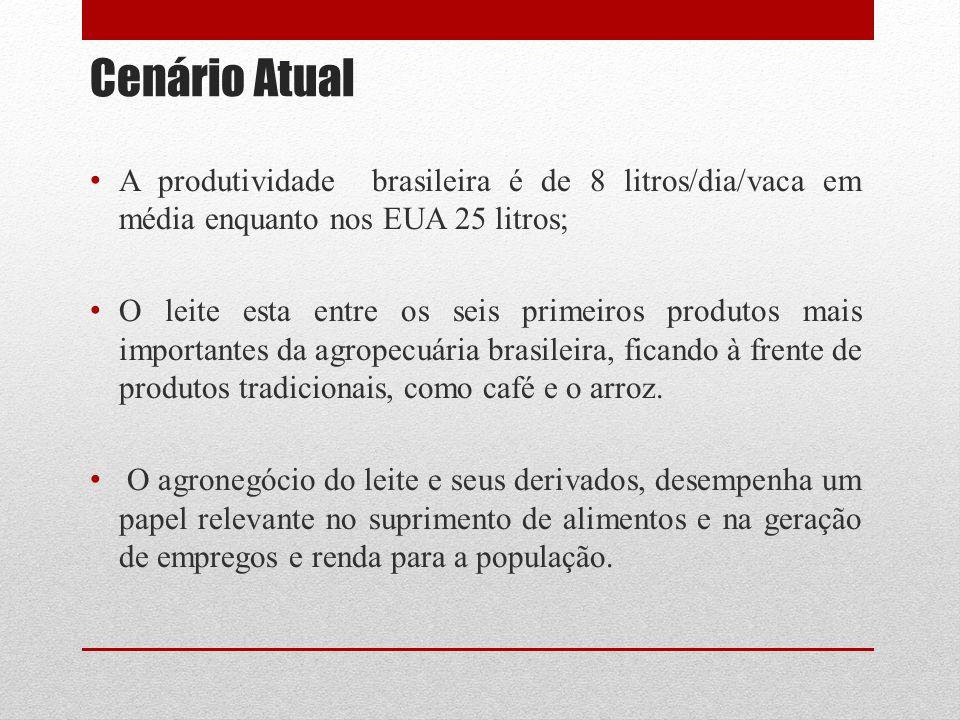 Cenário Atual A produtividade brasileira é de 8 litros/dia/vaca em média enquanto nos EUA 25 litros;