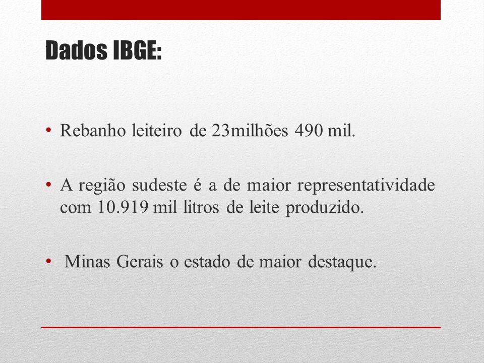 Dados IBGE: Rebanho leiteiro de 23milhões 490 mil.