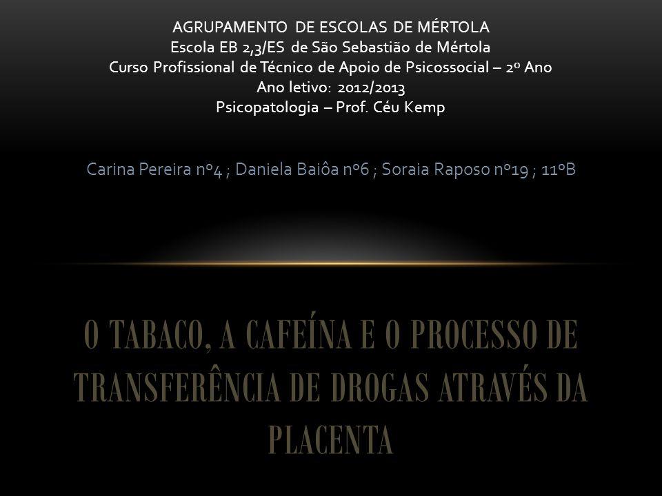 Carina Pereira nº4 ; Daniela Baiôa nº6 ; Soraia Raposo nº19 ; 11ºB