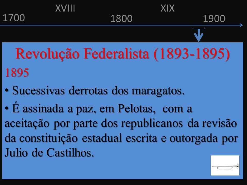 Revolução Federalista (1893-1895)