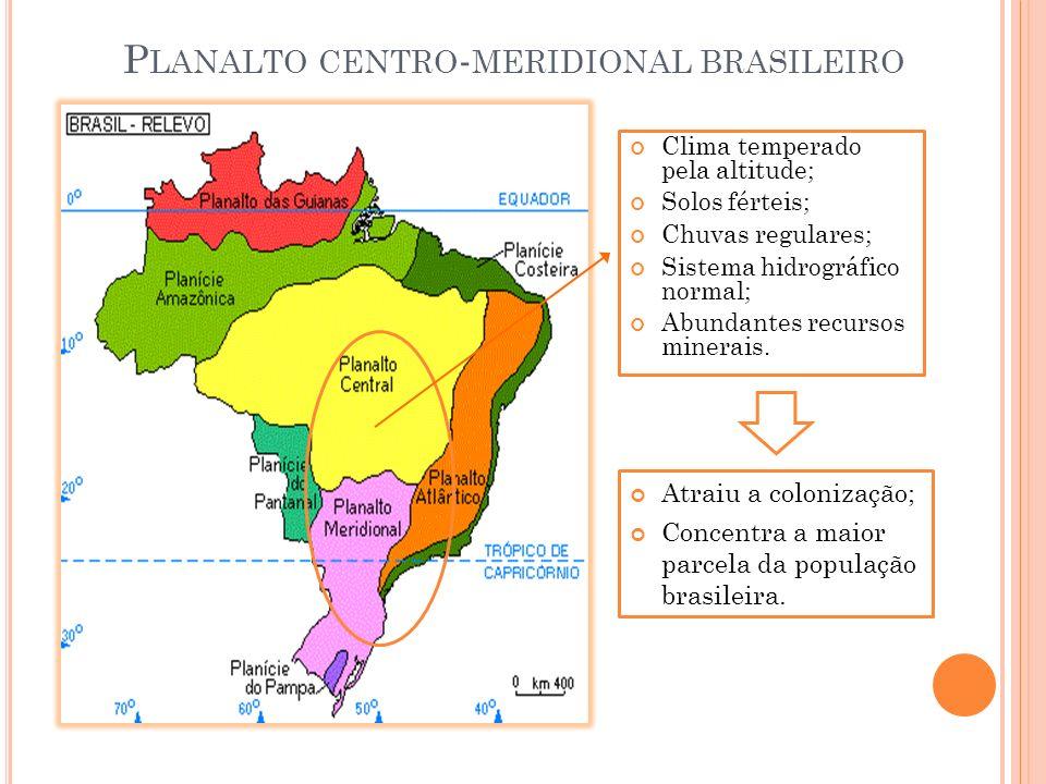 Planalto centro-meridional brasileiro